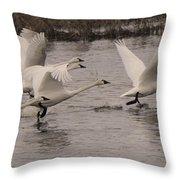 Tundra Swans Take Off Throw Pillow