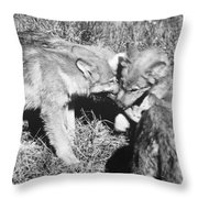 Tundra Wolf Pups Throw Pillow