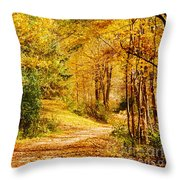Tunnel Of Gold Throw Pillow