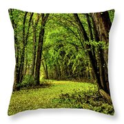 Tunnel Of Love Throw Pillow