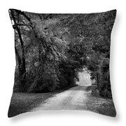 Tunnel Of Lydia Throw Pillow