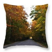 Tunnel Throw Pillow