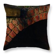 Tunnelling Throw Pillow