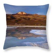 Tunupa Volcano Reflected In Salar De Uyuni At Twilight Bolivia Throw Pillow