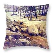 Tuolumne Stream Throw Pillow