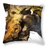 Turbulent Geography Throw Pillow