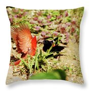 Turf War Throw Pillow