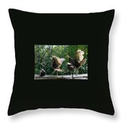 Turkey Dance Throw Pillow