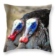 Turkey Prowl Closeup Throw Pillow