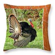 Turkey Strut Throw Pillow