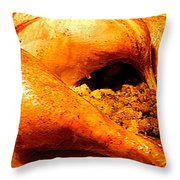 Turkey Time Throw Pillow