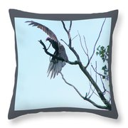 Turkey Vulture Drying Wings After Rain     Indiana Summer Throw Pillow