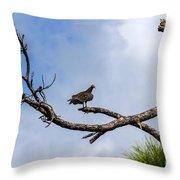 Turkey Vulture On Dead Tree Throw Pillow