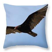 Turkey Vulture Soaring Throw Pillow