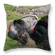 Turkeys In The Yard At Laguna Guerrero Throw Pillow