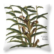 Turkish Corn, 1735 Throw Pillow