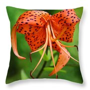 Turn Up The Heat Throw Pillow