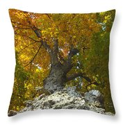Turning Colors Throw Pillow
