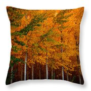 Turning Into Gold Throw Pillow
