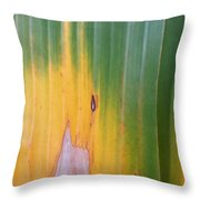 Turning Leaf Throw Pillow