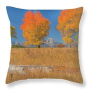 Turning Of Leaves Throw Pillow