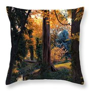 Turning Of The Leaves Throw Pillow