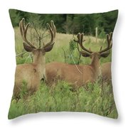 Turning Our Backs To You Throw Pillow