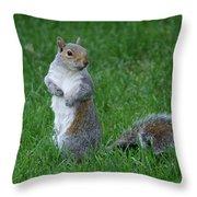 Turning Squirrel Throw Pillow