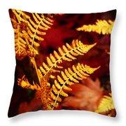 Turning To Autumn Throw Pillow