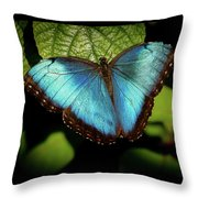 Turquoise Beauty Throw Pillow