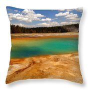 Turquoise Pool  Throw Pillow