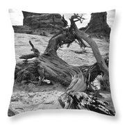 Turret Arch - Bw Throw Pillow