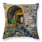 Turret Window Throw Pillow