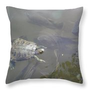 Turtle Amongst Fish Throw Pillow