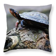 Turtle And The Hippo Throw Pillow