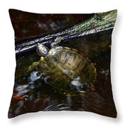 Turtle And The Stick Throw Pillow