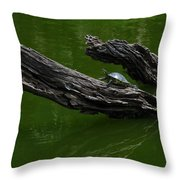 Turtle Art Throw Pillow