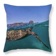 Turtle Breath Throw Pillow