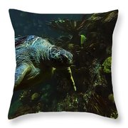 Turtle Crawl Throw Pillow