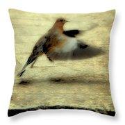 Turtle Dove Throw Pillow