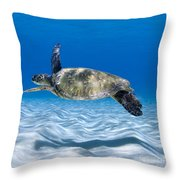 Turtle Flight -  Part 2 Of 3  Throw Pillow