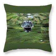 Turtle Head Throw Pillow