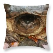 Turtle In Repose  Throw Pillow