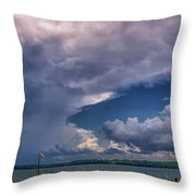 Turtle Point7 Throw Pillow