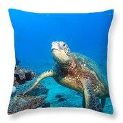 Turtle Portrait Throw Pillow