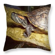 Turtle Reflections Throw Pillow by Deleas Kilgore