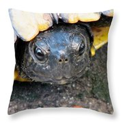 Turtle Smile Throw Pillow