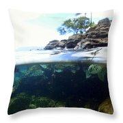Turtle Tide Throw Pillow