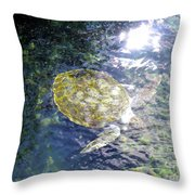 Turtle Water Glide Throw Pillow