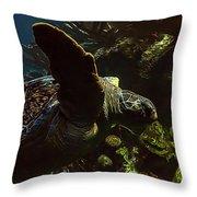 Turtle Wave Throw Pillow